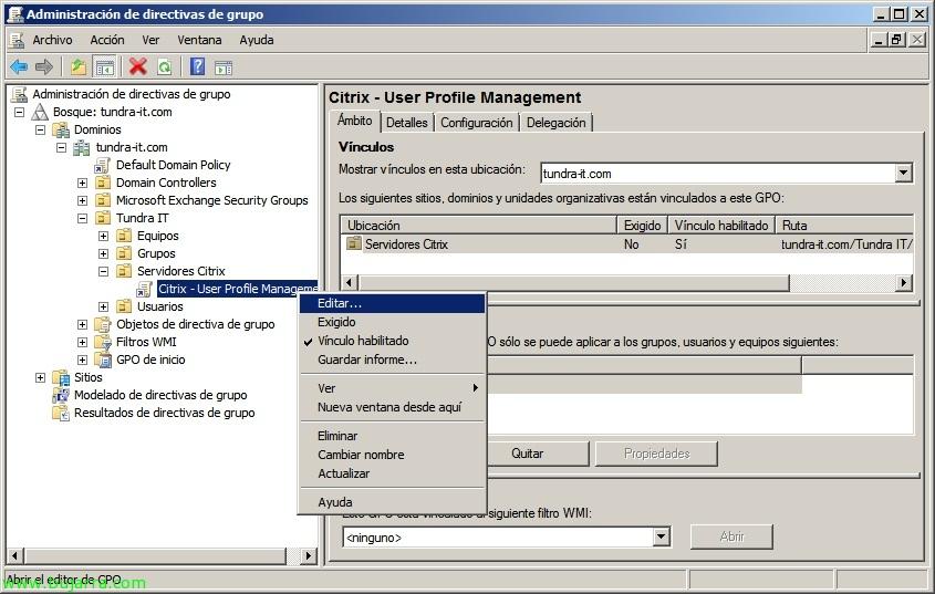 Configurando perfiles para XenApp o XenDesktop con Citrix Profile ...
