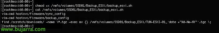 Backup-ESXi-Configuración-Programmierte-03-Bujar