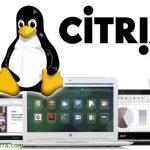 Instalando Citrix VDA en Linux para usarlo como desktop