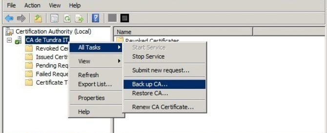 Requiriendo certificados de cliente para el acceso a Citrix con NetScaler