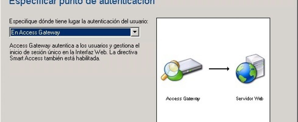 citrix-access-gateway-vpx-13-bujarra