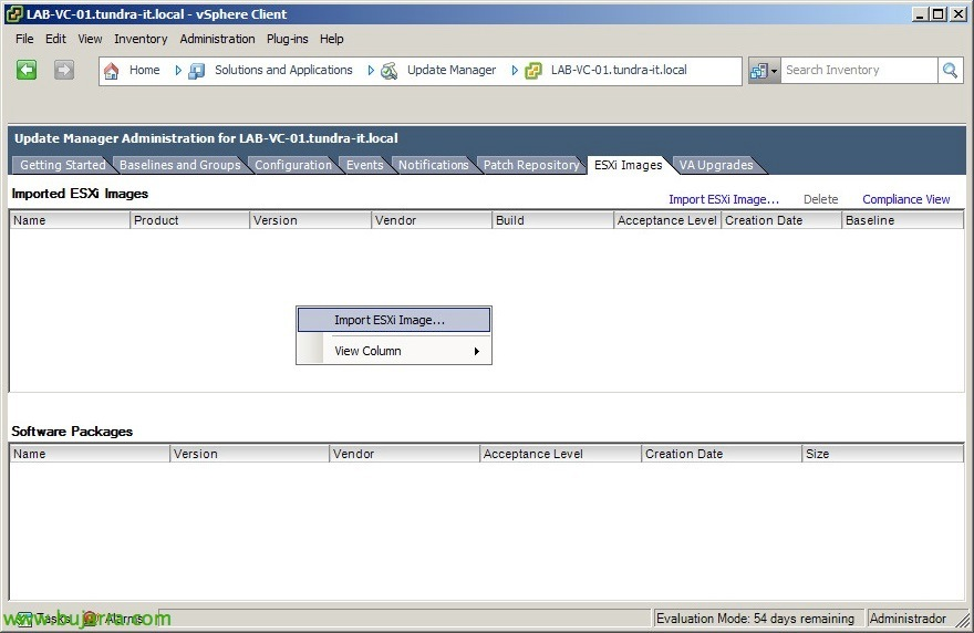 vmware-esxi5a55-con-update-manager-01-Bujar