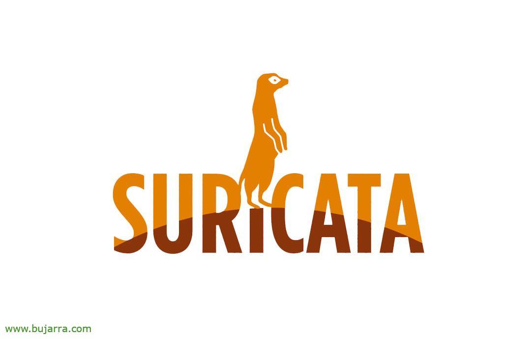 Suricata-00