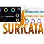 Visualizando los registros de Suricata en Grafana o Kibana